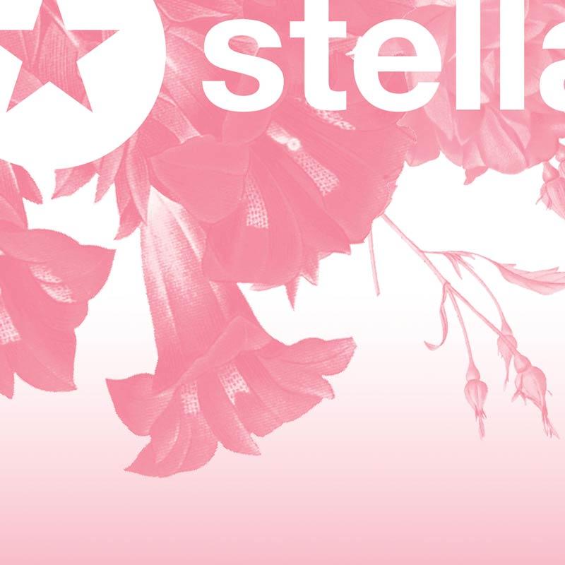 Salon Stella Pink Corner